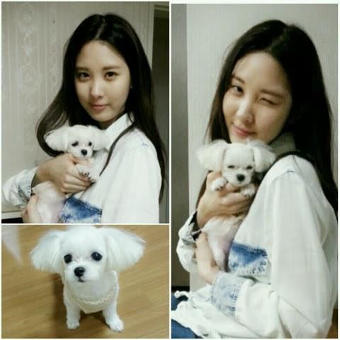 Seohyun bersama Dubu